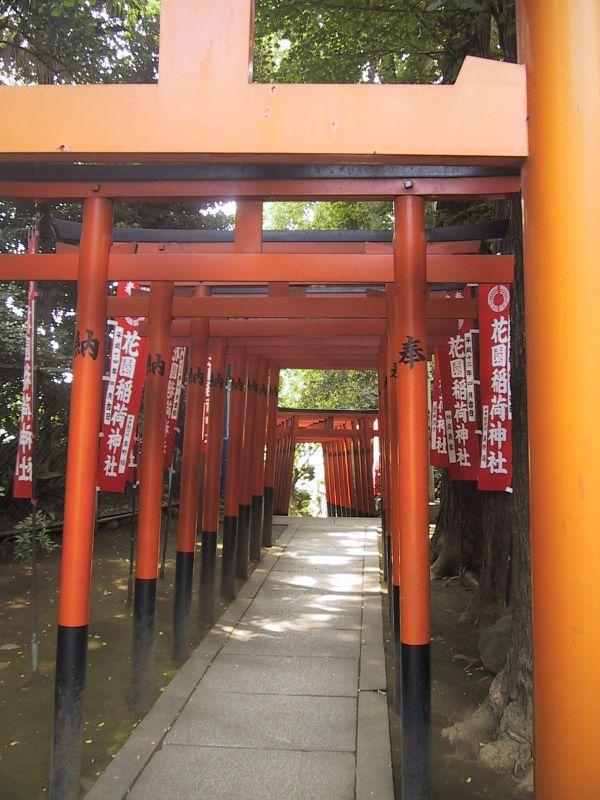 torii-japon