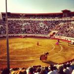 Bodega + corrida = féria