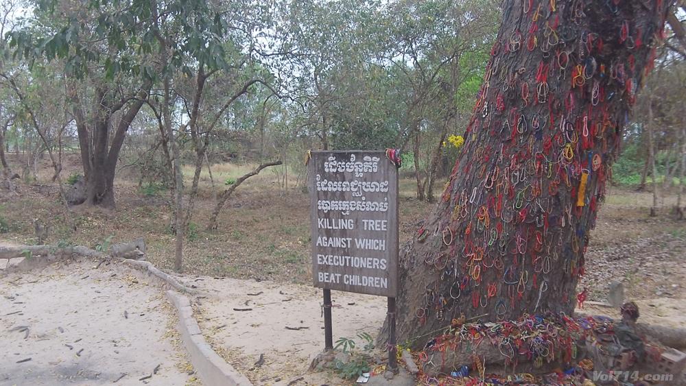 camps-de-la-mort-khmer-choeng-ek-phnom-penh-arbre-enfant