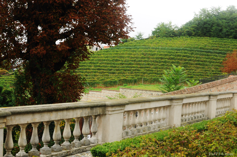 Turin_villa_della_regina_vigne