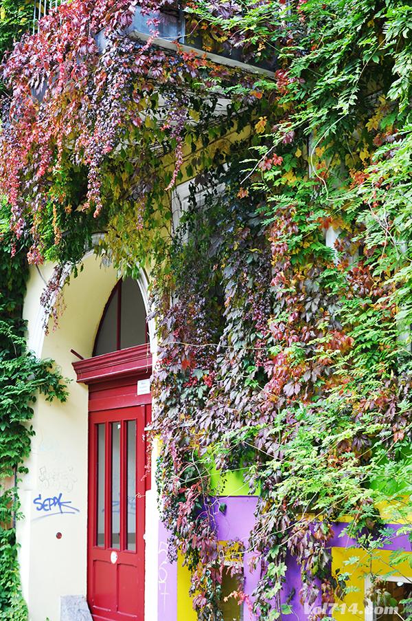 Berlin_Kastanienallee53