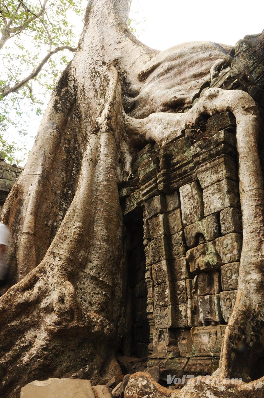 Cambodge 202