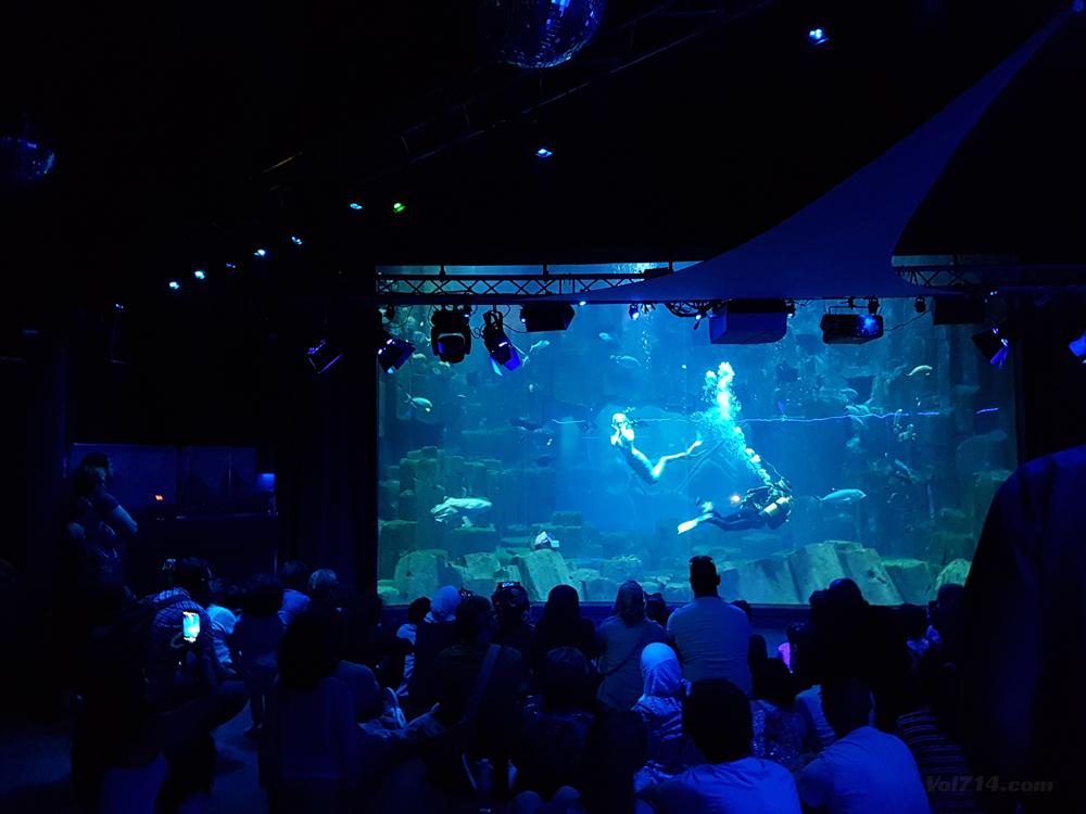 aquarium-cineaqua-paris (10)