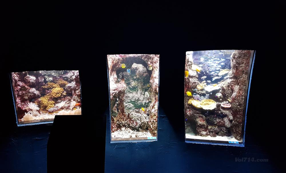 aquarium-cineaqua-paris (6)