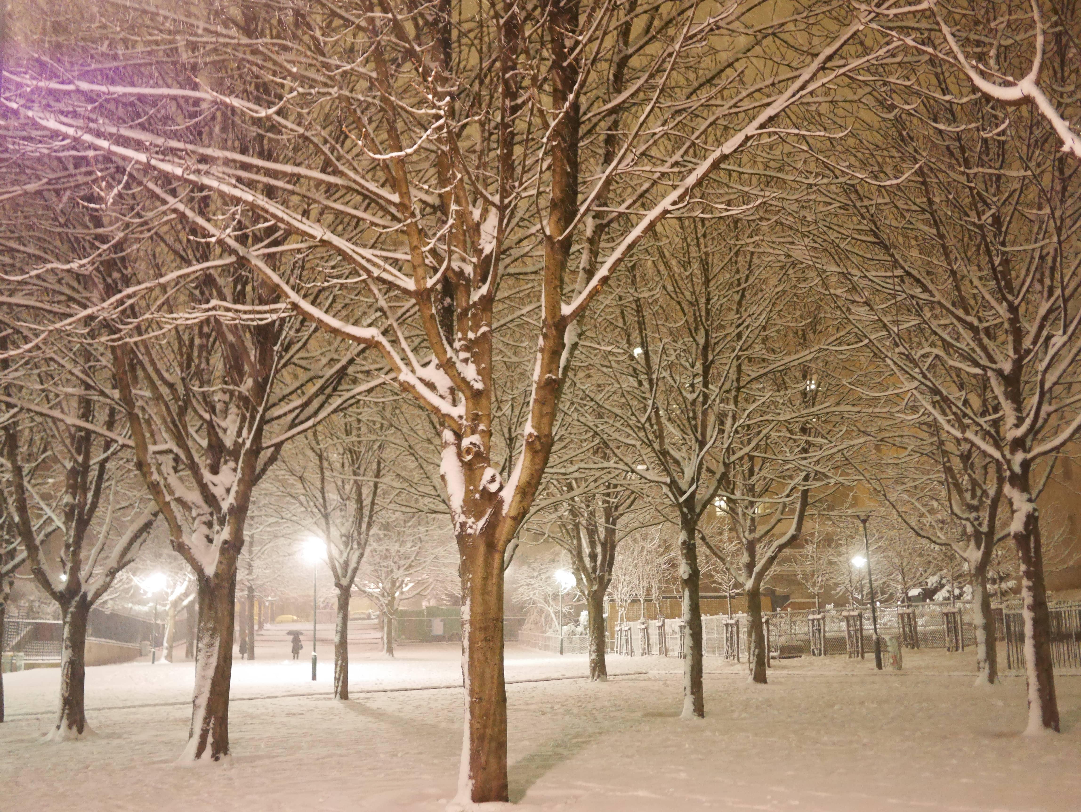 Paris Belleville sous la neige