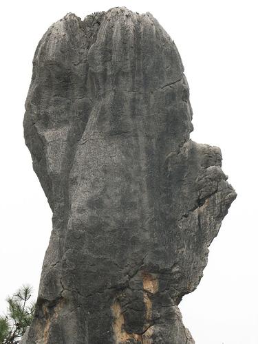 Shilin, la forêt de pierre kunming